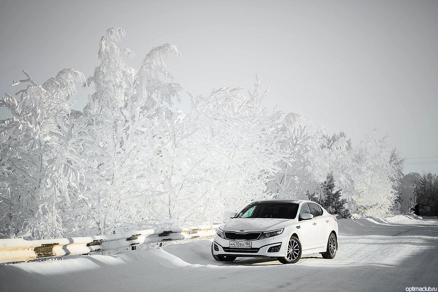 KIA Optima 2015 белого цвета